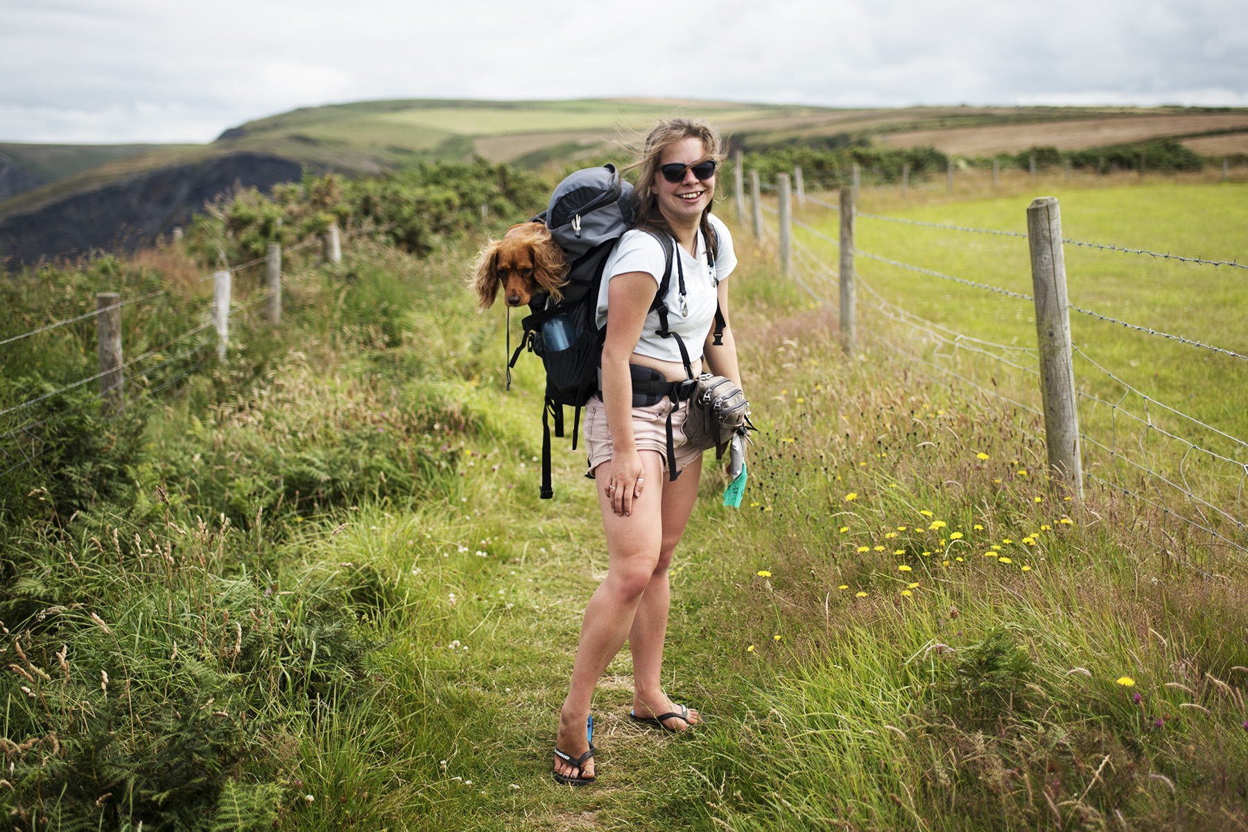 Wild Camping with Dogs in Boscastle | The Cornish Dog