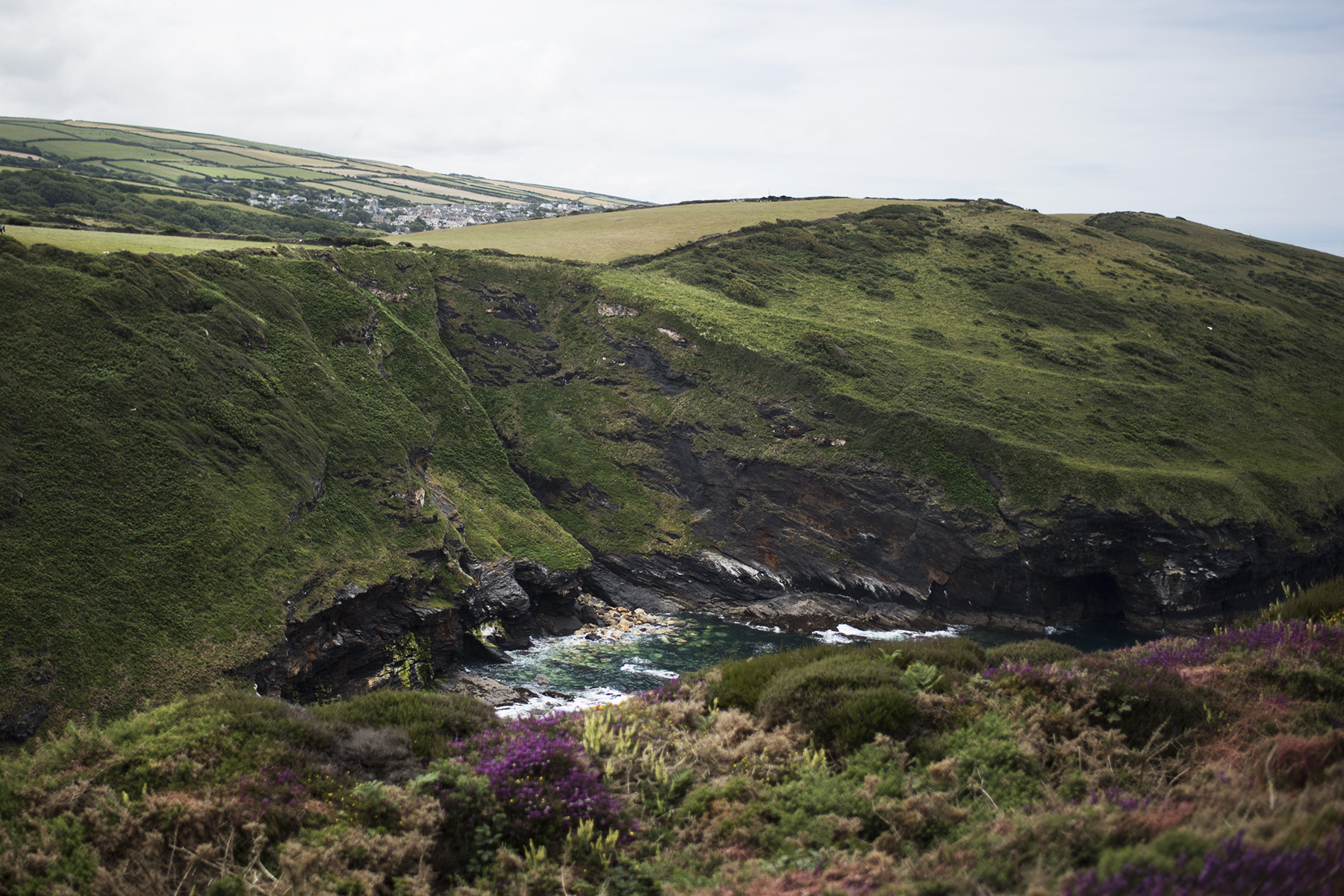 Beeny Cliff near Boscastle | The Cornish Dog