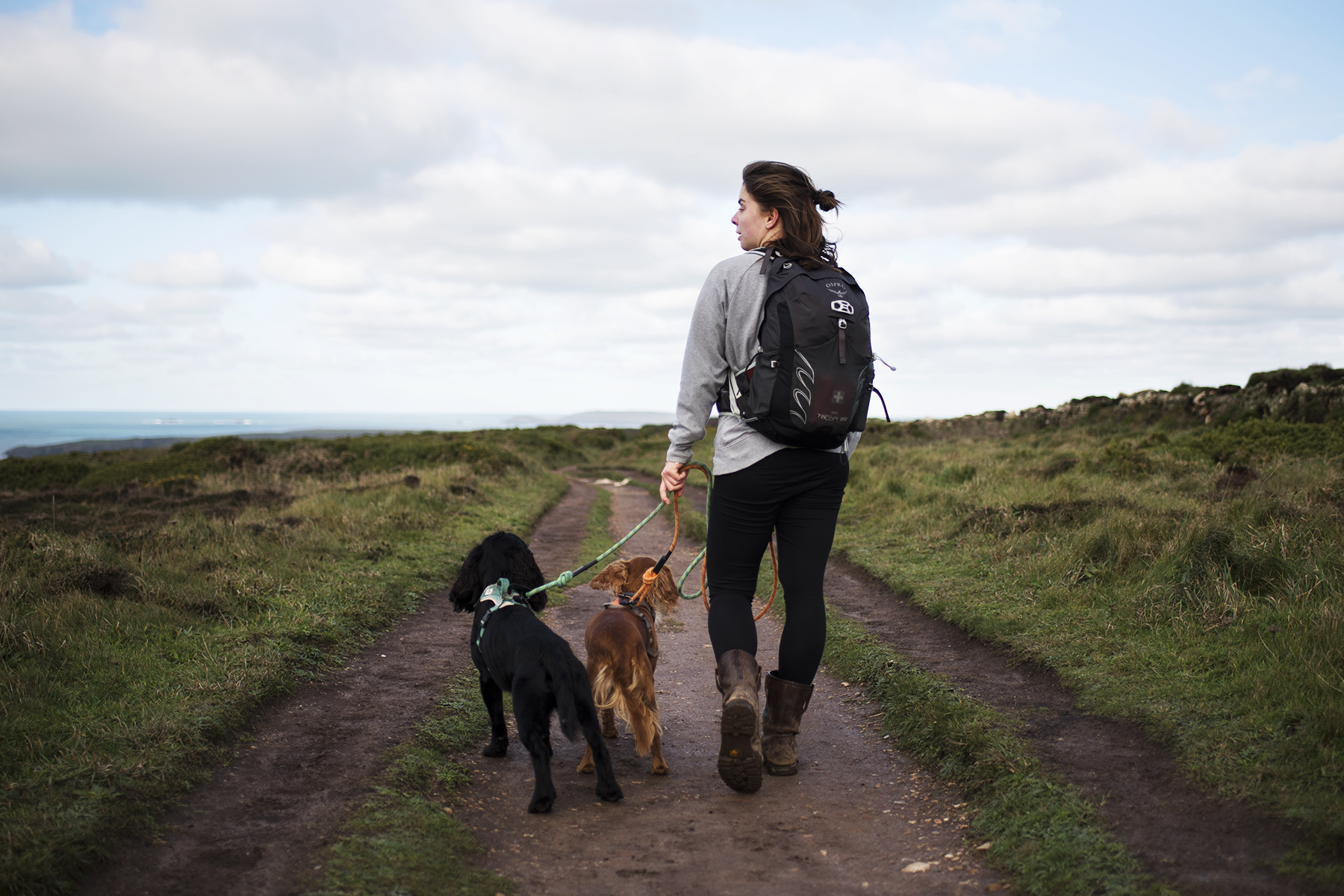 Christmas Gift Ideas for Outdoorsy Dog Owners | The Cornish Dog